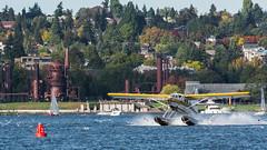 Seattle   |   Lake Union Seaplane (JB_1984) Tags: seaplane plane aeroplane seagull water lake gasworkspark autumn fall colour splash lakeunion lakeunionpark southlakeunion seattle kingcounty washington wa usa unitedstates