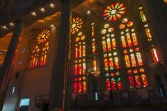 NH0A3776s (michael.soukup) Tags: barcelona sagradafamlia sagrada familia basilica church stainedglass color colorful windows nave interior gaudi churchoftheholyfamily catholicchurch artnouveau architecture neogothic spain catalonia