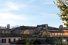 Tetti di Lucca (andrea.prave) Tags: lucca toscana tuscany italia italy      italie italien toscane toskana     tetti cintamuraria