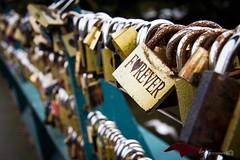 Forever (Forty-9) Tags: 24102016 love efs1785mmf456isusm forty9 padlocks 2016 bakewell tomoskay lightroom efslens canon 24thoctober2016 yorkshire eos60d monday bridge forever october locks holiday