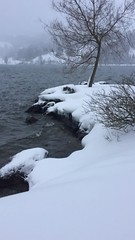 Frher Morgenspaziergang am Alpsee (alpseecamping) Tags: alpenluft allgu alpsee natursee schnee winter camping campingplatz urlaub spazieren wandern laufen