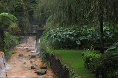 IMG_2576 (wozischra) Tags: azores saomiguel portugal island hotspring hotsprings