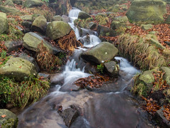 NB-2.jpg (neil.bulman) Tags: countryside longshawestate peakdistrict nature nationalpark derbyshire longshaw fog nationaltrust longexposure water burbagebrook derbyshiredalesdistrict england unitedkingdom gb