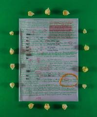 """More than 139 Greetings. How often do you greet daily? """"Grüß Gott Schön"""" Heute mindestens 139 Begrüssungen. Probenplan. Unterschriften gegen Rodung. Physalis Ernte Garten. Tinte Gold """"an apple a day keeps the doctor away - An ENSO a Day.."""" 26. August 2015 (hedbavny) Tags: vienna wien morning red white selfportrait green rot night ink circle gold austria abend design sketch österreich theater nightly theatre nacht rehearsal diary probe salute dream august sketchbook workshop silence cycle letter meditation grün greeting morgen tagebuch tinte horrorvacui impression lampion mittag physalis selfie kreis stille selbstporträt enso workingroom traum werkstatt gedanke entwurf westbahnhof handschrift weis skizze abendlich morgenstimmung arbeitsraum lampionblume skizzenbuch kapstachelbeere ereignis goldenberries zyklus bilderzyklus sommerlicht überlegungen grüsen hedbavny ingridhedbavny wochenbuch probenplan"""