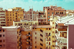 Rome from the top (inspiring!) Tags: houses italy holiday rome roma skyline vintage photography niceshot photographer rooftops photos inspiring musictomyeyes polestar beautifulshot superphotographer royalgroup flickrhearts youvegottalent flickraward flickridol flickrestrellas thebestshot flickrstarsgroup artofimages angelawards contactaward bestpeopleschoice poppyawards impeialimages fabulousplanetevo