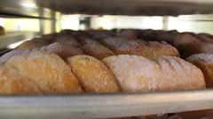 Donuts Galore (Margaret Grace C.) Tags: food lasvegas sweet donuts donut pastry 食べ物 donutshop foodtography 甘い deesdonut どナッツ
