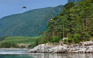 British Columbia Luxury Fishing & Eco Touring 54