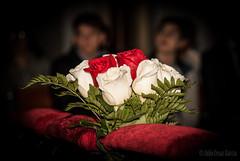 image.552428.o-2 (Julio Cesar Garca) Tags: flores rosas bodas celebraciones juliocesar