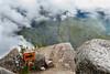 Peru-341 (mike_p_uk) Tags: mountain peru machu picchu book 2015 wayna