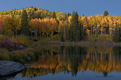 Twilight (Happy Photographer) Tags: autumn trees mountain reflection fall is twilight pond aspen afterdark grandmesanationalforest