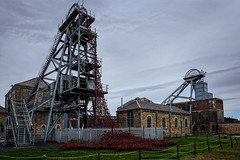 Weeping Window / The Wave (MMiPhoto) Tags: museum mine northumberland poppies coal weeping woodhorn ashington colliery scheduledancientmonument