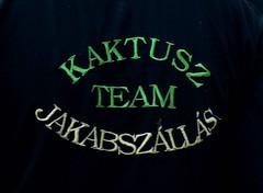 20150725-jakab-napi-vigassag-033-k