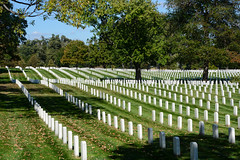 Arlington (sarah_presh) Tags: usa holiday green cemetery grass virginia washingtondc washington military graves national memory arlingtonnationalcemetery arlngton nikond7100