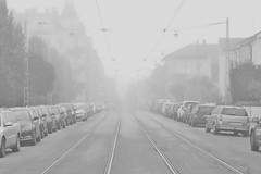 Spår (tusenord) Tags: bw mist monochrome track horizon railway norrköping spårvagn horisont spår fotosondag fs151018