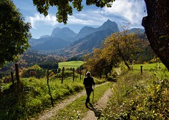 Walking in Vercors (loveexploring) Tags: autumn france tree green fall landscape track meadow bluesky autumncolours walker vercors farmtrack hikingstick isère rhônealpes labâtie frenchprealps trièves vercorsmassif