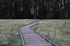 Yosemite XXI (Jake Allison) Tags: park nps el national valley yosemite capitan
