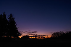 Morning in Vermont (Shira Bezalel) Tags: morning trees silhouette vermont