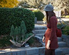 Bonsai VI ('SeraphimC) Tags: california park family trees nature beauty bonsai pasadena huntingtongardens