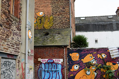 Rennes Automne - atana studio (Anthony SJOURN) Tags: cats signs streetart streets building green fall grass automne studio season eyes brittany funny chat bretagne anthony detritus asphalt rennes fenetre rubish folles saison macadam herbes goudron atana sjourn