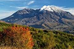 FALL COLOR AT MT ST HELENS-MT ST HELENS (Forest Service - Pacific Northwest) Tags: 2004eruption clouds eruption fallcolor geological hummocks loowitfalls mountain mtsthelens mtsthelensnationalvolcanicmonument naturalresources sky snow steamplume usforestservice volcano washington watershed unitedstates giffordpinchot giffordpinchotnf giffordpinchotnationalforest nationalforest nationalforests washingtonscascades