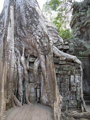 DSCN2300 (albyantoniazzi) Tags: voyage travel architecture cambodia angkorwat temples siemreap archeology kampuchea cambogia