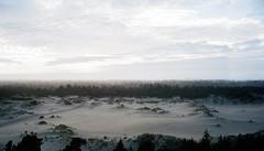 Dune City (Dunstan) Tags: 959 film portra bessar 3a voightlnder kodak 400 color 35mm