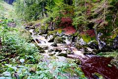 Steinklamm - Stone Gorge (ivlys) Tags: bayern bayerischerwald bavarianforest spiegelau steinklamm groseohe fluss river wasser water landschaft landscape nature ivlys