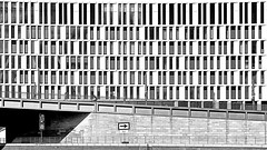 This way (RosLol) Tags: roslol berlin berlino germany germania lifeinthecity street people gente bw blackandwhite biancoenero architecture architettura building bike bridge ponte
