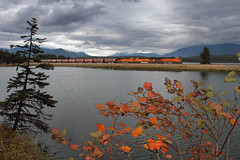 Fall at Frog Pond (Moffat Road) Tags: bnsf graintrain ge es44c4 troutcreek montana montanaraillink mrl mrlsfourthsubdivision mrl4thsub frogpond fallcolor autumn fall water train railroad locomotive mt