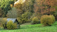 Hay Sheds of Murg Valley 12 (MJWoerner49) Tags: blackforest hut murgtal murg murgvalley northernblackforest gernsbach reichental forbach gausbach barn shed hay haybarn hayshed autumn