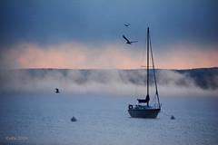 2016_09_04_54 (batty9a) Tags: boats gulls mist sunrise water morning morningmist chautauqua chautauqualake nikon nikond5200 nikkor infinitexposure lake sky minimalism outdoor blinkagain nikonflickraward