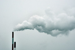 Equarissage (J.Martin14) Tags: fume chemine mort