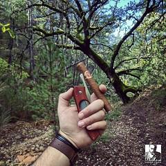 Ok so...I might be lost. But at least I have my survival kit  (steven_cigale) Tags: cigar cigare cigarlife cigaraficionado cigarporn cigars cigares cigarlover amateurdecigare     zigarre cigarsmoking luxury cigarsmokingmodel p1p2c cigarsmoker cigarians botl aficionado cigaroftheday