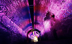 Purple it is (M a u r i c e) Tags: purple colour color light illumination trajectumlumen efs1022mm wideangle ultrawidezoom utrecht ganzenmarkt netherlands tunnel graffiti converging brick