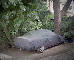 Covered (Monkeypainter) Tags: fuji400h porec film 6x7 makina67 covered croatia mediumformat plaubel street