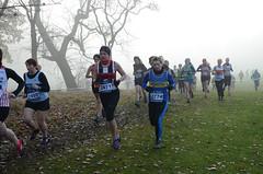 DSC_3493 (Dave Pinnington Photography) Tags: european womens xc trials sefton park liverpool 261116 photos by dave pinnington