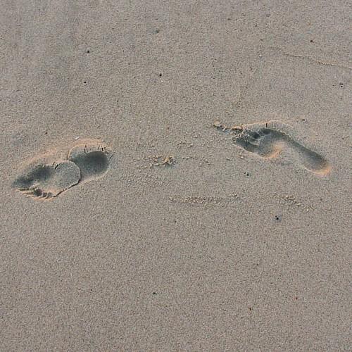 Pegadas na area ao solpor #praiadabarra #praia #solpor #pegadas #huellas #aveiro #portugal #nortedeportugal #galizadosul #galegospolomundo #instagood #instagramers #viajar #viaxar