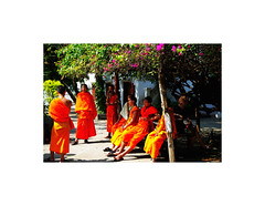 Meeting (isabelle.giral) Tags: laos monk moine orange pentax meeting runion