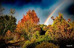 _DSF0202- L'automne de sa fentre (Jack-56) Tags: fujix100t fuji x100t raw automne france bretagne arcenciel