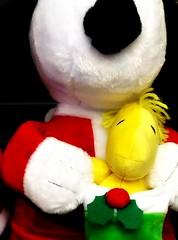 There's something in the air... (e r j k . a m e r j k a) Tags: snoopy christmas holidays woodstock stocking figure whimsy peanuts toy erjkprunczyk