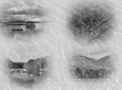 Playing about with images (monyet_uk) Tags: montage lochlomond balmaha blackandwhite water