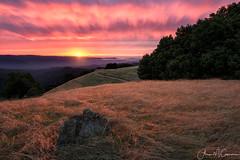 Above It All (Aron Cooperman) Tags: aroncooperman california escaype landscape northerncalifornia november2016 openlightphoto sunset wbpa longridgeopenspacepreserve nikond800 longridge nikon1424 losaltos mountains santacruzmountains fog sunstar clouds