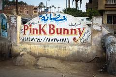 Cairo, Egypt (stefan_fotos) Tags: afrika humor kairo qf schilder sujets themen urlaub hq gypten cairo egypt africa