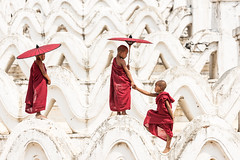 N13_4528 (Bugphai ;-)) Tags: myanmar monks burma white travel red buddhist portrait theravada mingun historical children collect burmese landmark culture worship locations old novice people traditional stupa buddhism asia belief spirituality religious mandalay myatheindan paya maintain young architecture temple person boys hsinbyme pagoda places kid monastery buddha alms large man prayer little hsinbyume asian