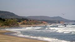 Colmuyao, Chile (Nicols Mndez) Tags: plata beach mar sea campo naturaleza paisaje maravilla paraiso chile sudamerica costa litoral maritimo belleza natural praia