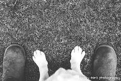That time Mav had feet. (floppyearsphotography) Tags: bw dog feet labrador line paws slippers matte uggboots petphotography