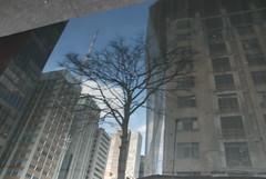So Paulo 2015 (Gilmar Hermes) Tags: brazil espelho brasil de sopaulo agosto sampa sp espejo reflejo reflexo spiegelbild brasile sanpablo sudamerica amricadosul spejl brazili spiegeling 2015 amriquedusud  zuidamerika rflexion  amricadelsur  sdamerika  southamrica sydamerika spegulo refleksion brazilo anbhrasal brazilija     reflejoenelespejo    amricadelsud   sudameriko   spculaire pietamerika  meiricetheas   reflekto   sramerikaamerica sudbrazilia rflexionspculaire   speguloreflekto spejlrefleksion