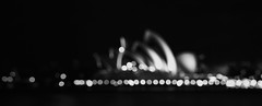 Sydney Obscured House B+W (Beetwo77) Tags: panorama house smart canon out focus opera none bokeh sony sydney blurred adapter f4 70200mm autopano bokerama metabones nex7