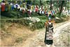 "India Travel Photography ""Kora Walk Namgyal Monastery McLeod Ganj Dharamsala"" Himachal Pradesh.019 by Hans Hendriksen (Travel Photography - Reisfotografie) Tags: voyage travel india mountain nature berg landscape temple photography gold photo memorial foto walk buddha religion natur north pass culture natuur free monk buddhism tibet glacier holy monastery monks valley zanskar lama kashmir himalaya landschaft ferien manali kora himachal indus nord victims klooster kloster dharamsala jammu dalai landschap cultuur pradesh noord rohtang monch daramsala monnik religie boeddha gletsjer keylong baralacha sarchu daramshala namgyal reisefotografie boeddhisme baijnath reisebilder zangla reisfotografie reisfoto индии химачалпрадеш"