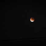 Blood Moon over West Seattle thumbnail